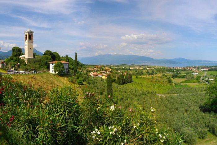 Colline Moreniche del Garda