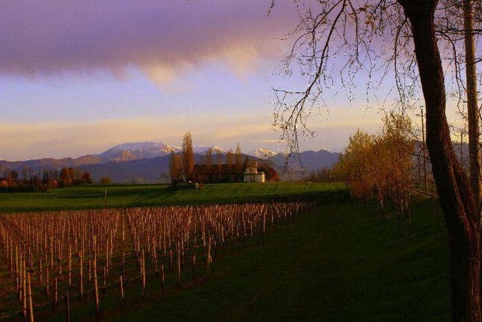 Parco agricolo regionale del Montenetto
