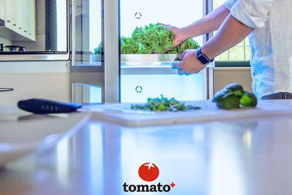 Tomato⁺ - l'orto automatizzato