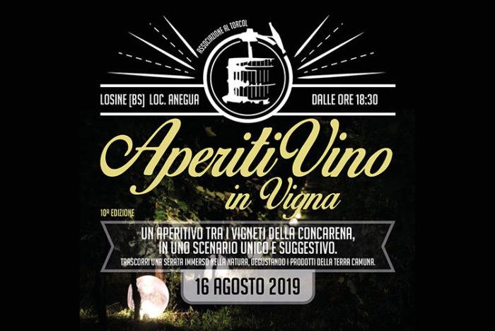 AperitiVino in Vigna a Losine
