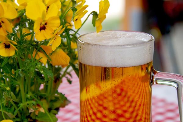 Festival della Birra Artigianale - Il Desenzanino