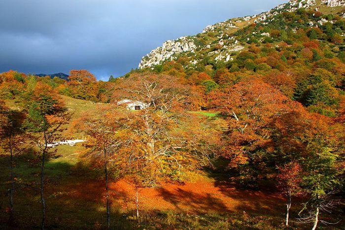 Oasi naturale protetta del Baremone - Brescia